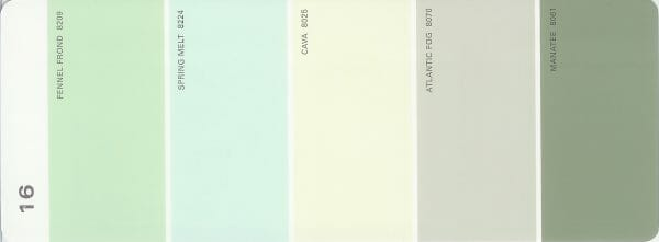 Martha Stewart Paint 5-Color Palette Card #16