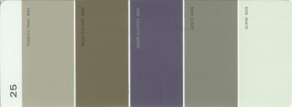 Martha Stewart Paint 5-Color Palette Card #25