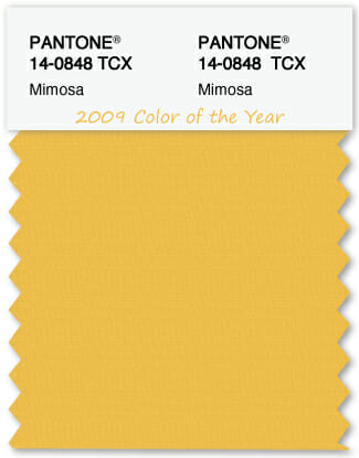 Color Swatch Pantone color of the year 2009 Mimosa