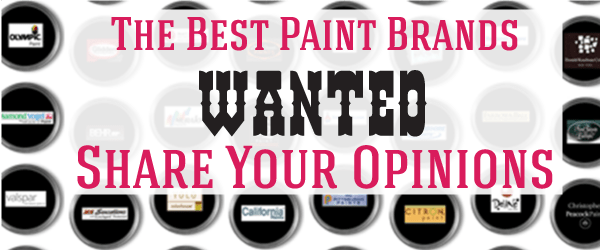 What are the best paint brands