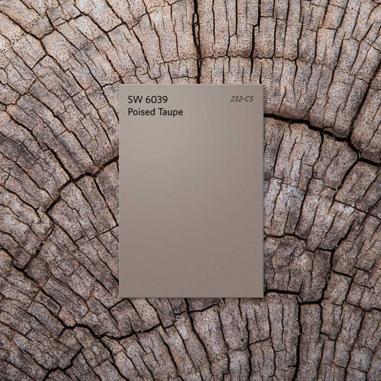 Poised Taupe Sherwin-Williams Color of the Year 2017