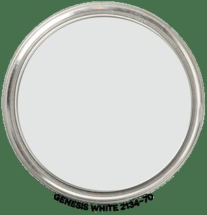 Genesis-White-2134-70 Paint Blob
